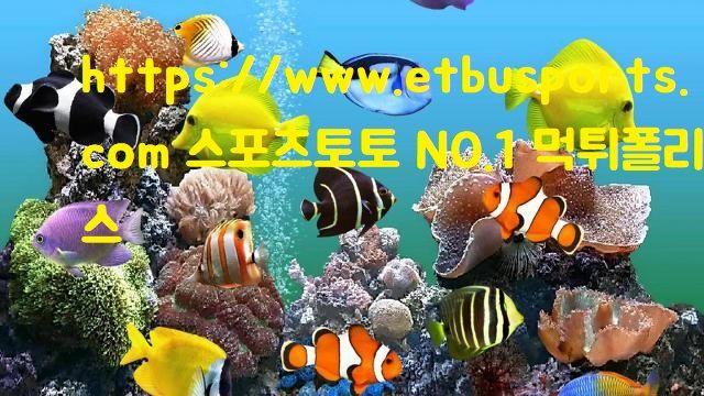 https://www.etbusports.com 스포츠토토 NO.1 먹튀폴리스 -1